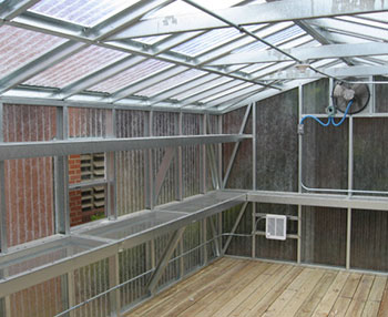 A big greenhouse with double shelving allows space and room for growing more green plants.